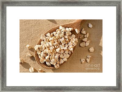 Expanded Popped Buckwheat Groats Framed Print by Arletta Cwalina