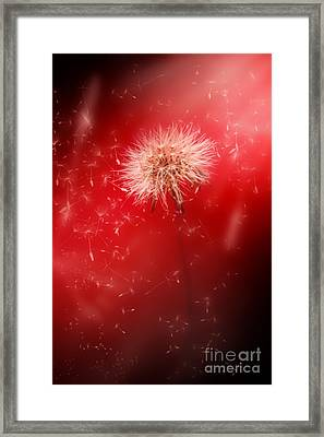 Expansive Energy Framed Print by Jorgo Photography - Wall Art Gallery