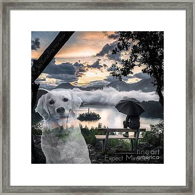 Framed Print featuring the digital art Expect Miracles by Kathy Tarochione