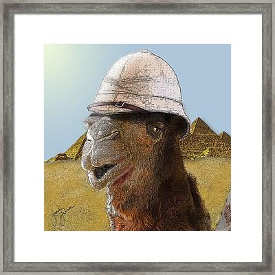 Expeditionary Camel At Giza Framed Print