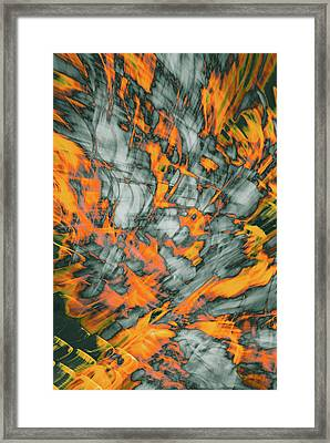 Exploded Fall Leaf Abstract Framed Print