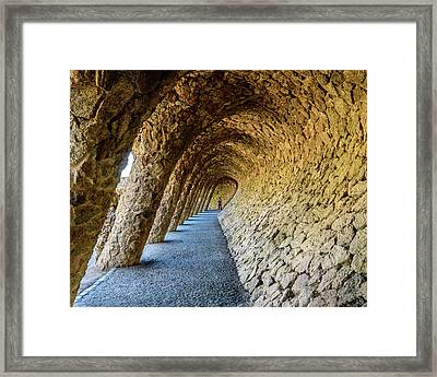 Framed Print featuring the photograph Explorer by Randy Scherkenbach