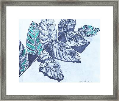 Exploring A Leaf 1 Framed Print