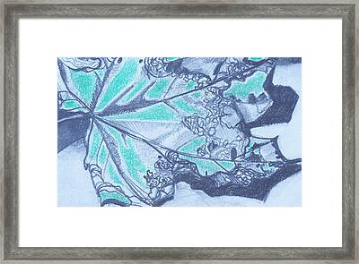 Exploring A Leaf 2 Framed Print