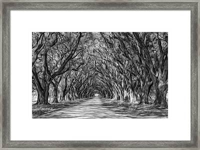 Exploring Louisiana - Paint Bw Framed Print by Steve Harrington