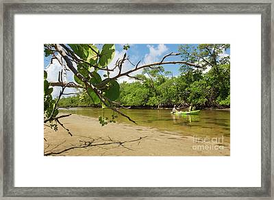 Exploring South Florida's Wilderness - Father And Son Kayaking Framed Print
