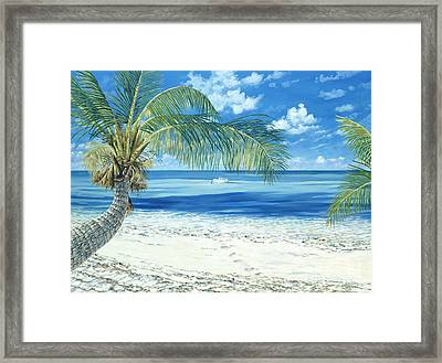 Exploring The Shallows Framed Print by Danielle  Perry