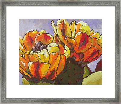 Explosion Of Color Framed Print by Sandy Tracey