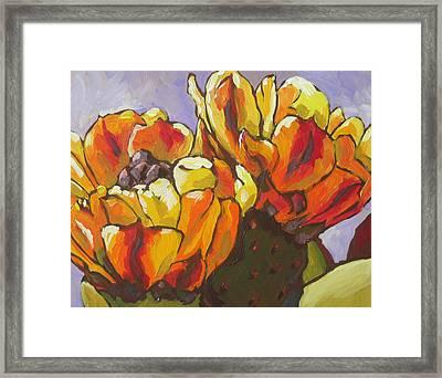 Explosion Of Color Framed Print