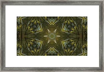Explosion Of Colours 1 Framed Print by Quantum Space