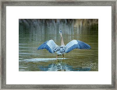 Expose Yourself To Nature Framed Print by Emily Bristor