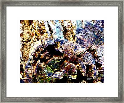Exposed To The  Elements Framed Print