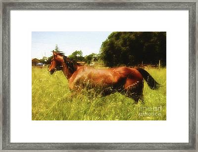Express 2 Framed Print by Jacque The Muse Photography