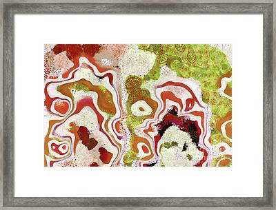 Expression - A12 Framed Print