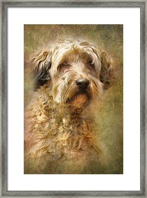 Expression Framed Print by Trudi Simmonds