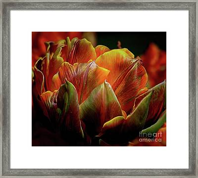 Extraordinary Passion Framed Print