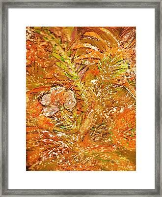 Extravaganza Orange Framed Print by Anne-Elizabeth Whiteway