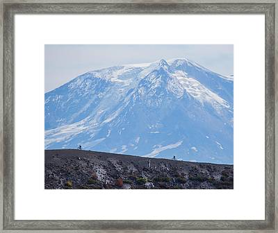 Extreme Mountain Biking Framed Print by Angie Vogel