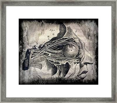Eye And Optic Nerve  1780 Framed Print by Daniel Hagerman