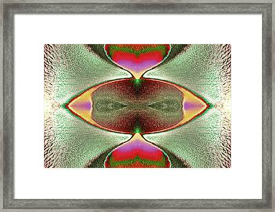 Framed Print featuring the photograph Eye C U  by Tony Beck