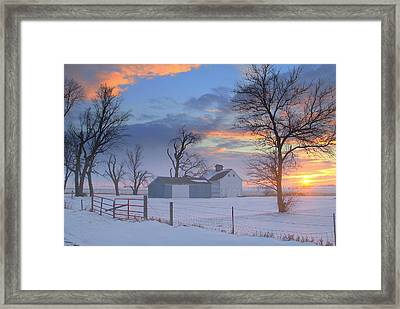 Eye Candy..winters Framed Print