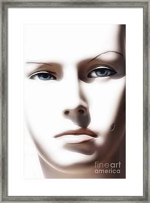 Eye Contact Framed Print by Dan Holm