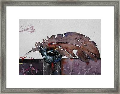 Eye Feather Framed Print