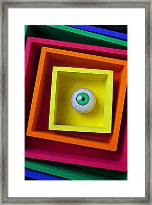 Eye In The Box Framed Print by Garry Gay