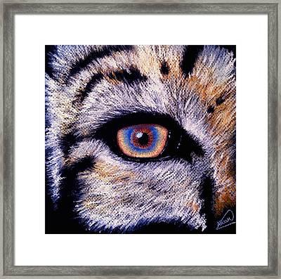 Eye Of A Tiger Framed Print