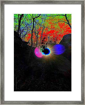 Eye Of Nature Framed Print