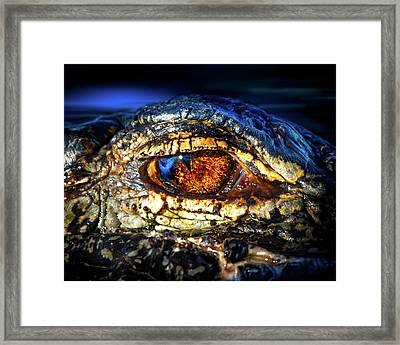 Eye Of The Apex Framed Print