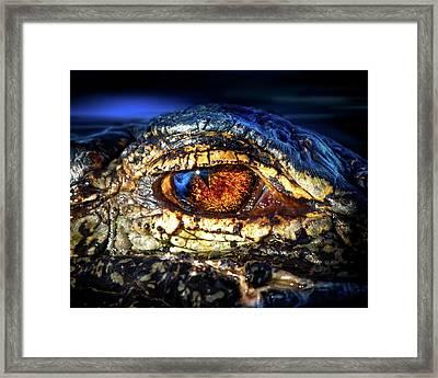 Eye Of The Apex Framed Print