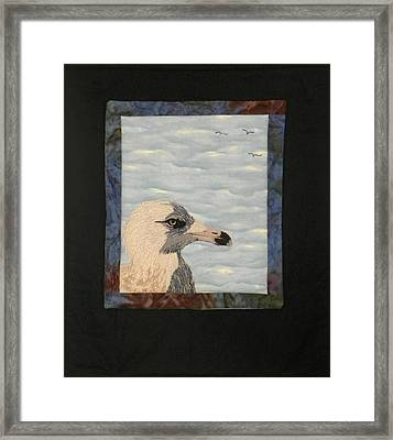 Eye Of The Gull Framed Print