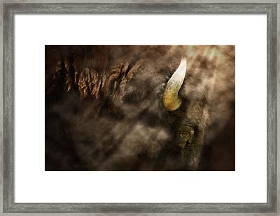 Eye Of The Hunted Framed Print