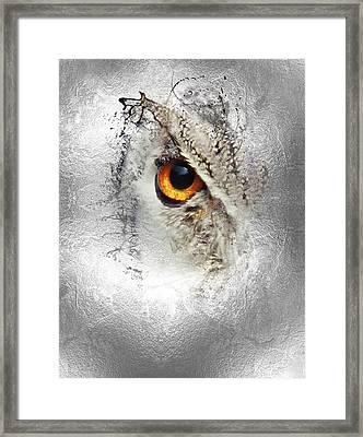 Framed Print featuring the photograph Eye Of The Owl 1 by Fran Riley