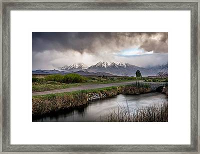 Eye Of The Storm Framed Print by Cat Connor