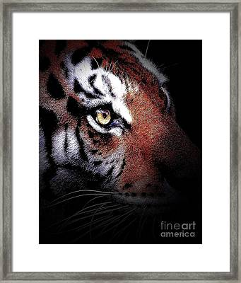 Eye Of The Tiger 2 Framed Print by Animals Art