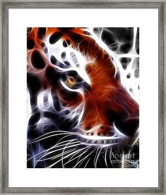Eye Of The Tiger 2 Framed Print by Wingsdomain Art and Photography