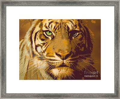 Eye Of The Tiger Animal Portrait  Framed Print