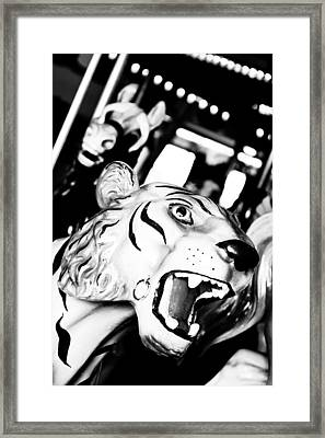Eye Of The Tiger Framed Print by Colleen Kammerer