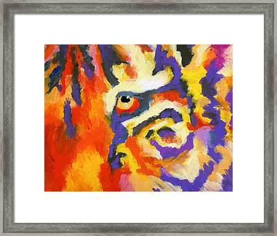 Eye Of The Tiger Framed Print by Stephen Anderson
