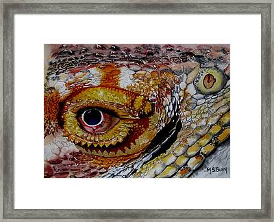 Eye On The Matter Framed Print by Maria Barry