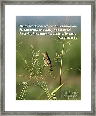 Eye On The Sparrow Framed Print by Robert Frederick