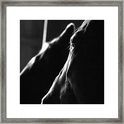 Eye Squared Framed Print by Angela Rath