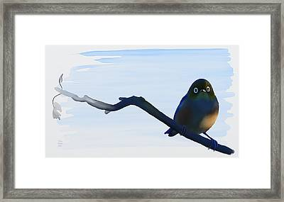 Eye To Eye With Silvereye Framed Print by Ivana Westin