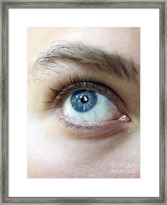 Eye Up Framed Print