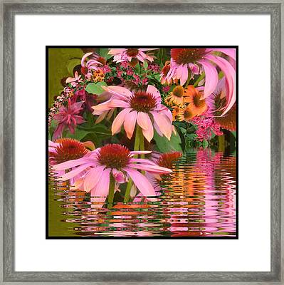 Eyecatching Cone Flowers Framed Print by Nancy Pauling