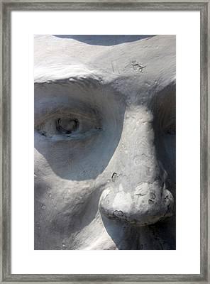 Eyed 2 Framed Print by Jez C Self