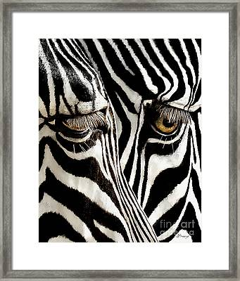Eyes And Stripes Forever Framed Print by Jennie Breeze