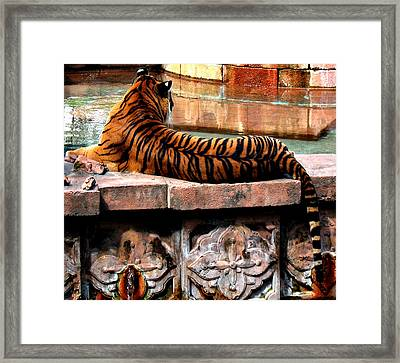 Eyes Behind Your Head Framed Print